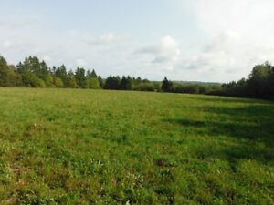 Approved Building Lot with a total of 12 acres!!