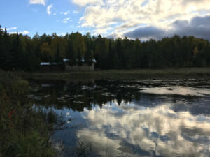 Off Grid Cabin on 3 ponds, 178 acres matures forest NW Ontario