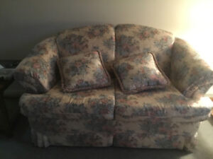 Love seat sofa/couch with 2 pillows