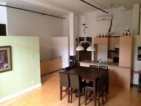 Loft/condo 2 chambres à vendre - 2 bedroom loft/condo for sale