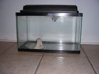 """A fish tank for sale  W10 x H12 x L20"""" (about 11 gallons)  Great"""
