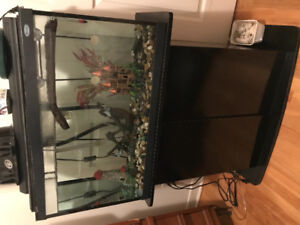 Selling Aquarium, filter, light and stand