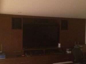 TV Sony and surround sound system