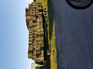 HAY, quality hay for sale Arnprior area