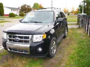 2009 Ford Escape Fully Loaded with Dual DVD Headrests