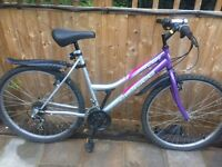 "Ladies 20"" concept bicycle inc new lights & mudguards. Free delivery. D lock available"
