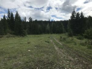 1930.94 Acres  of Land close to Williams Lake