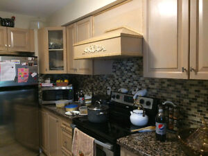 Kitchen Cabinets, Countertop, double sink