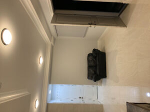 Furnished 1 bdrm apartment Richmond