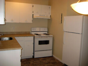 Clean And Updated 2 Bedroom Apartment - Available May 15th