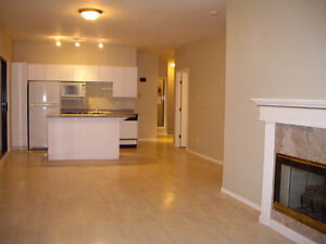 Penthouse suite 1500 sq feet in Downtown Langley