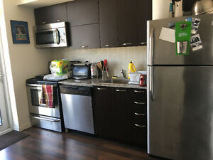 JUNIOR ONE BEDROOM FOR RENT DOWNTOWN TORONTO