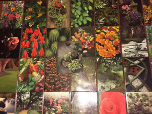 Gardening Encyclopedia