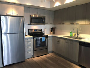 3br - 3 bath Furnished avail May 1st to Aug 31st