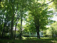 House to Share - Carleton Place / Almonte