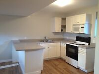 Bright, new, 1 bedroom, great East Hill walkout suite