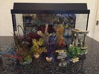 Tropical fish tank - Open to offers