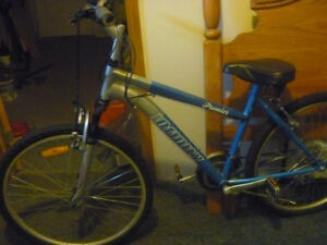 "INFINITY 26"" Ladies Mountain Bike"