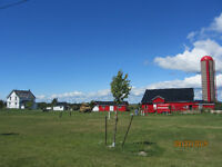 4 Bedroom Farm House on Wolfe Island + Barn + 25 acres
