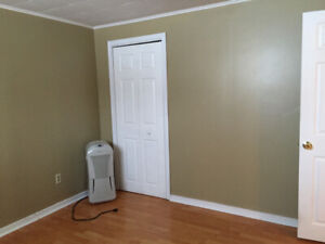One bedroom apartment - west end