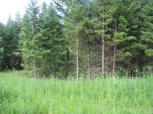 Build your dream home in one of Williams Lakes finest locations Williams Lake Cariboo Area image 4