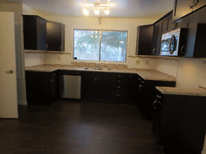 UPDATED HOME IN ST.ALBERT FOR SALE