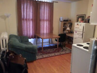 All inclusive 1 BR Minutes to Hospitals, Queens, and Downtown