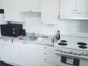 Everything included! December to August sublet! Kitchener / Waterloo Kitchener Area image 1