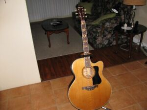 hohner acoustic electric quitar