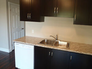 Beautiful one bedroom at University and Ira Needles Kitchener / Waterloo Kitchener Area image 6