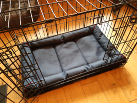 Medium sized, black Kong 2 door dog crate with cover and matress