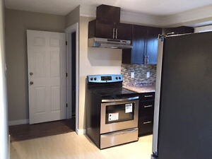 Newly renovated 2 bedroom house for rent must see Edmonton Edmonton Area image 1