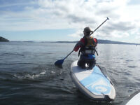 Sunset 2 hr Paddle board Tour in Mill Bay- Amazing deal!