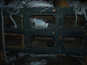 cage à lapins ou autres