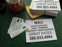 Snow removal MacMaster Area 289-933-4984