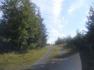 20 Acre, Wooded Lot with Gorgeous Views of Fraser Lake!