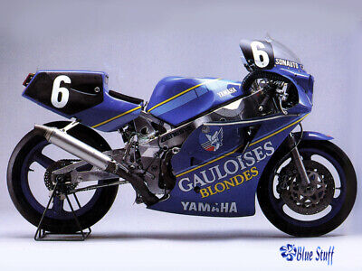 DECAL: 1/12 BS12001 2011 1985 GO!!!!!!!! YAMAHA FZR500 for sale  Shipping to India