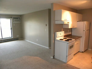 2 Bedroom Updated Apartment in Great Location