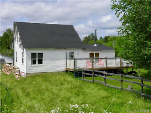 Riding ring and barn, private deck, large kitchen, wood stove