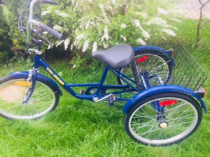 Tricycle TRI-RIDER pour Adolescent ou Adulte de couleur Bleue
