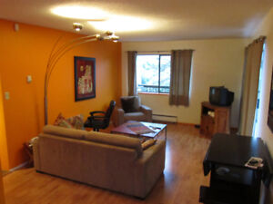Sunny 1 Bdrm Apt, in heart of Mount Pleasant (Main/5th)750Ft2