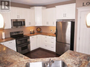 SINK AND COUNTERTOPS ** PRICED TO SELL ** OPEN TO OFFERS !!