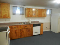 Large 1 bedroom plus den basement apt