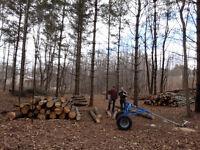 Logger / Chainsaw Operator - $30/hour + Comprehensive Benefits