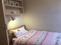 MUJI Bentwood Ash Bed - Single Base