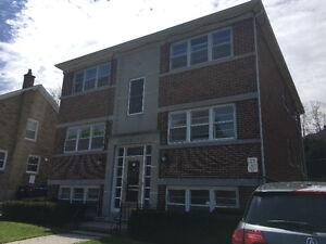 31 Herbert Street, Kitchener - 1 bedroom Apartment