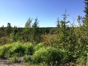 Gullys Path LOTS - Harbour Grace, NL - MLS# 1132066