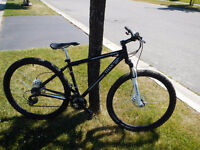 Mens 29er Mountian bike