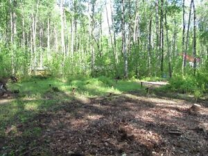 Cabin and two 1/2 acre lots by slave lake Strathcona County Edmonton Area image 5
