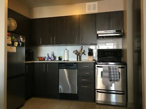 1 Bedroom Apartment - Newly Renovated - Located Downtown